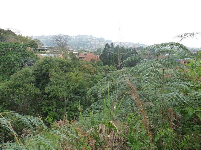 Terreno Distrito Metropolitano>Caracas>La Union - Venta:17.390.000.000 Bolivares - codigo: 16-3402