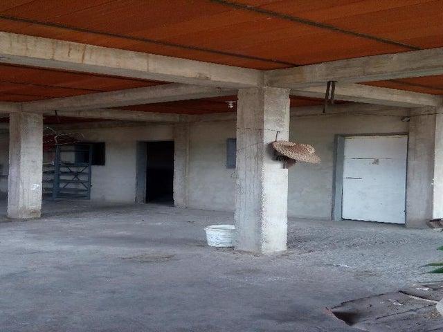 Local Comercial Miranda>Municipio Independencia>Cartanal - Venta:146.709.000.000 Precio Referencial - codigo: 16-3875