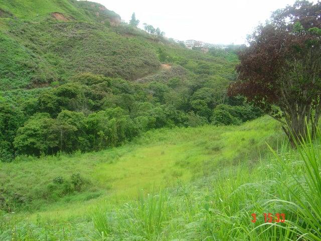 Terreno Miranda>Los Teques>Los Montes Verdes - Venta:232.955.000.000 Precio Referencial - codigo: 16-4245