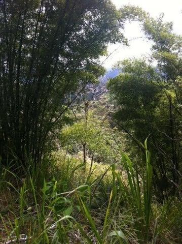 Terreno Distrito Metropolitano>Caracas>Oripoto - Venta:42.751.000.000 Precio Referencial - codigo: 16-5652