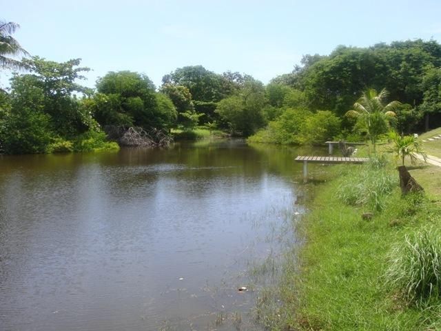 Casa Miranda>Rio Chico>Los Canales de Rio Chico - Venta:13.846.000.000 Bolivares - codigo: 16-8035