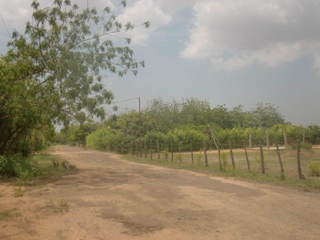 Terreno Zulia>Maracaibo>Via Aeropuerto - Venta:2.256.000.000 Bolivares - codigo: 16-8282