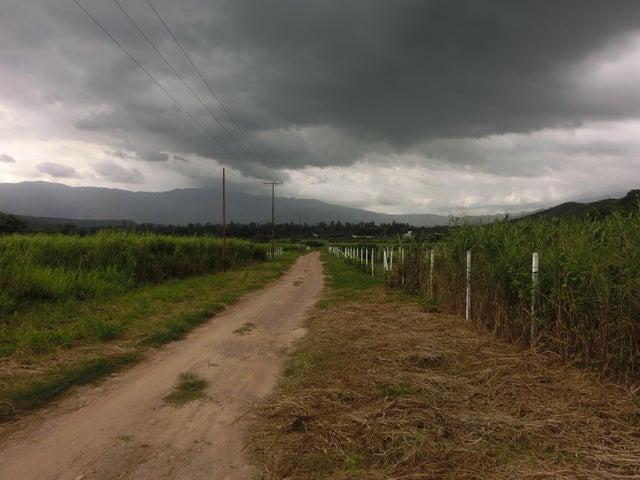 Terreno Carabobo>Municipio Bejuma>Bejuma - Venta:50 Precio Referencial - codigo: 16-11008