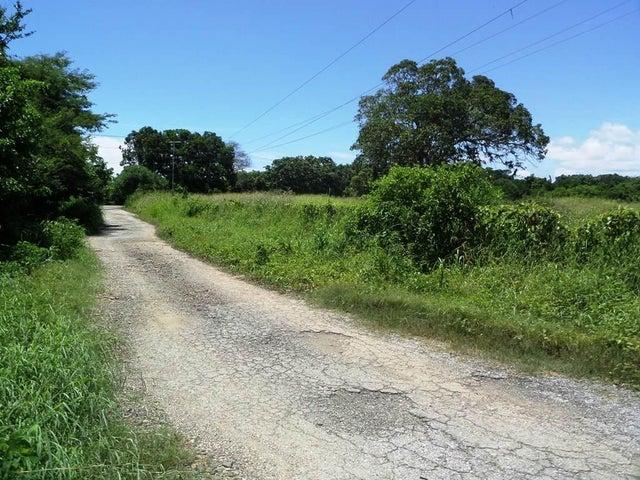 Terreno Miranda>Rio Chico>San José - Venta:17.078.000.000  - codigo: 16-11617