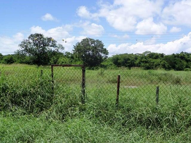 Terreno Miranda>Rio Chico>San José - Venta:1.155.000.000 Bolivares - codigo: 16-11619