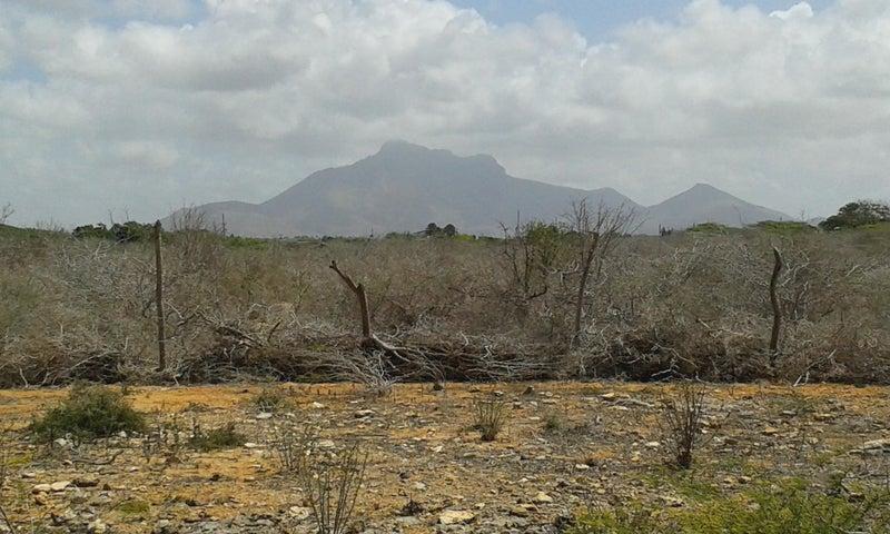 Terreno Falcon>Paraguana>Cerro Norte - Venta:127.000.000 Bolivares - codigo: 16-11732