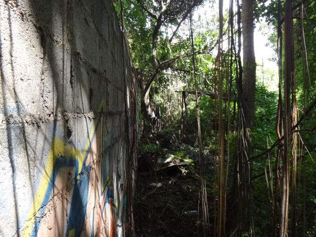 Terreno Distrito Metropolitano>Caracas>Prados del Este - Venta:166.643.000 Precio Referencial - codigo: 16-12558