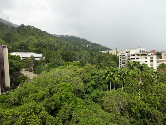 Apartamento Distrito Metropolitano>Caracas>Los Chorros - Venta:516.404.000.000 Precio Referencial - codigo: 16-12763