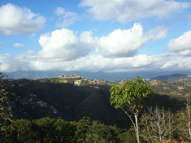 Terreno Distrito Metropolitano>Caracas>Sabaneta - Venta:220.000 US Dollar - codigo: 16-14846