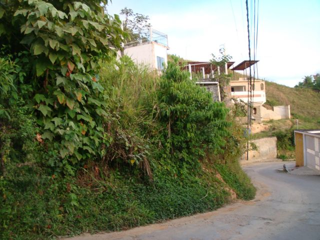 Terreno Distrito Metropolitano>Caracas>La Union - Venta:8.261.000.000 Precio Referencial - codigo: 17-2229