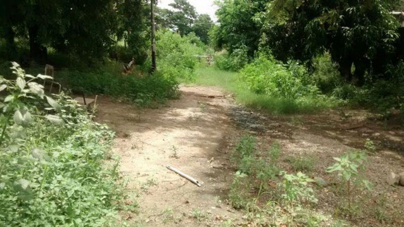 Terreno Aragua>Santa Cruz de Aragua>Residencias Santa Cruz - Venta:146.631.000.000 Bolivares - codigo: 17-5521
