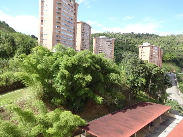 Apartamento Distrito Metropolitano>Caracas>Miravila - Venta:20.000 US Dollar - codigo: 17-10017