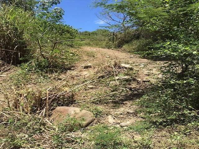 Terreno Lara>Tocuyo>Municipio Moran - Venta:12.000 US Dollar - codigo: 17-10816