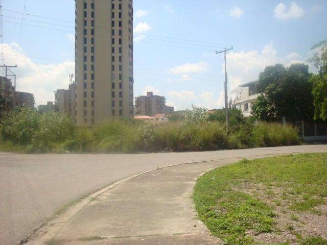Terreno Aragua>Maracay>San Jacinto - Venta:265.000 Precio Referencial - codigo: 17-12341