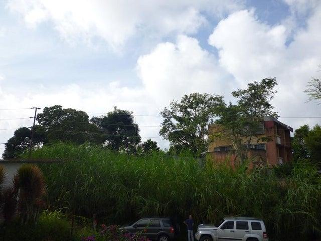 Terreno Distrito Metropolitano>Caracas>La Union - Venta:50.000 Precio Referencial - codigo: 17-13200