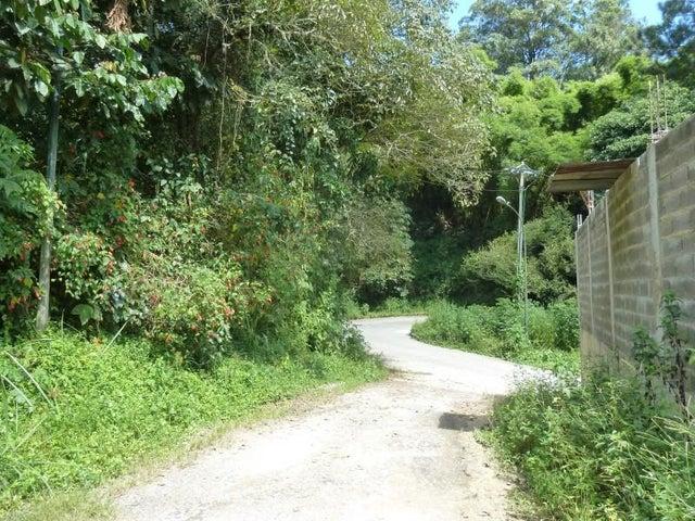 Terreno Distrito Metropolitano>Caracas>La Boyera - Venta:340.000 US Dollar - codigo: 17-13532