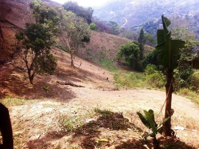 Terreno Distrito Metropolitano>Caracas>Oripoto - Venta:400.000 US Dollar - codigo: 17-14701
