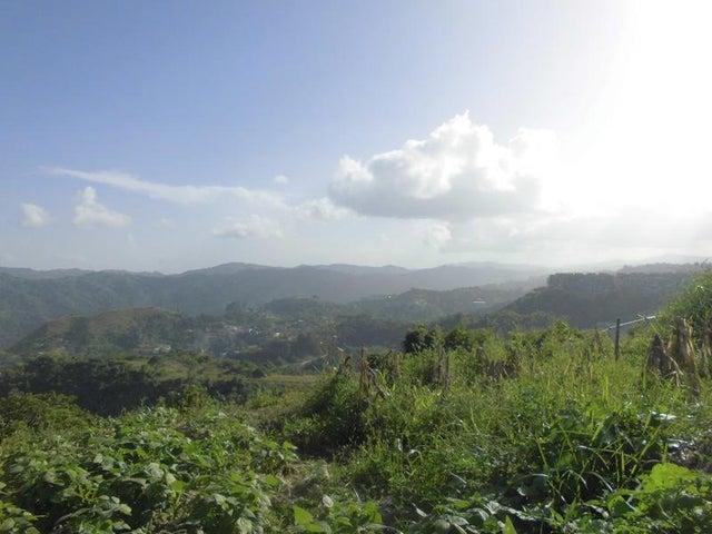 Terreno Distrito Metropolitano>Caracas>Loma Linda - Venta:1.400.000 Precio Referencial - codigo: 17-14958