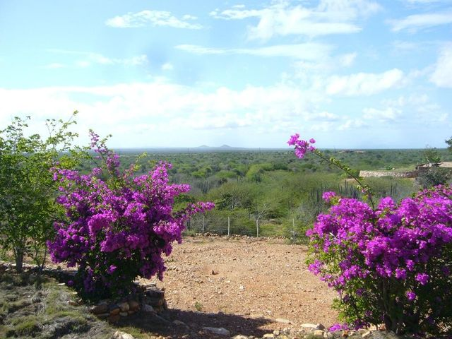 Casa Nueva Esparta>Margarita>Macanao - Venta:115.000 Precio Referencial - codigo: 17-15589