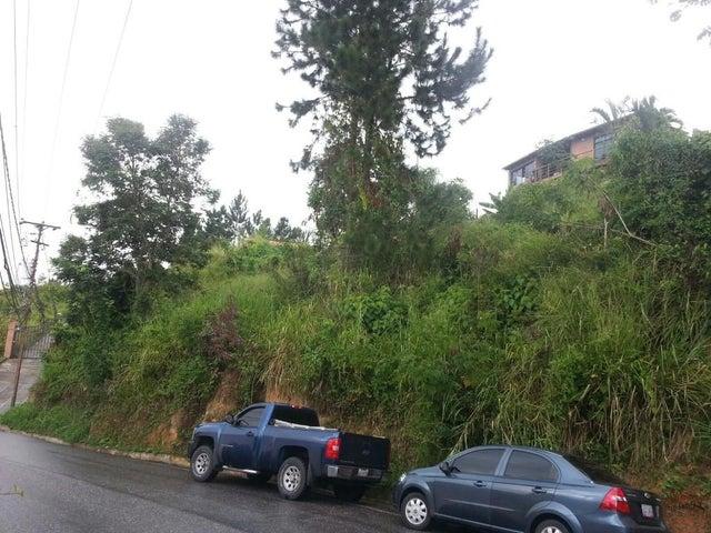 Terreno Distrito Metropolitano>Caracas>Caicaguana - Venta:12.000  - codigo: 18-238