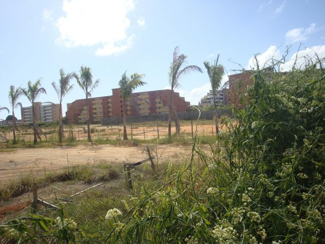 Terreno Miranda>Higuerote>Agua Sal - Venta:1.800.000 Precio Referencial - codigo: 18-948