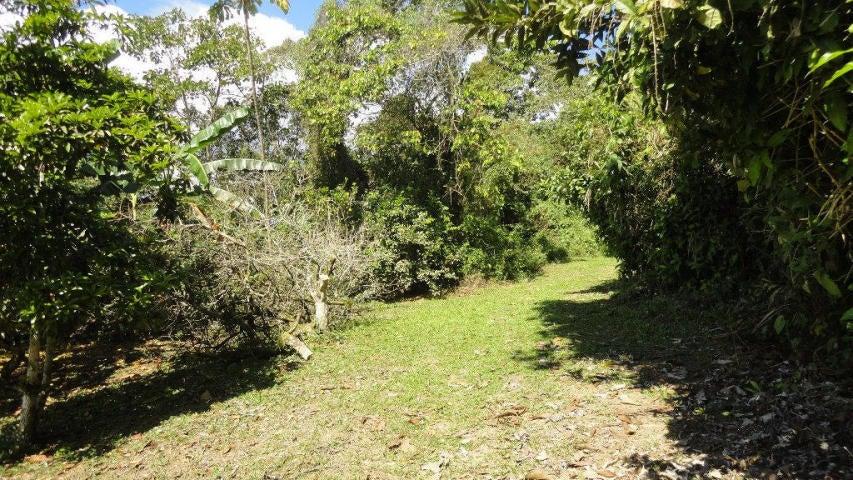 Terreno Miranda>Paracotos>Parques Del Sur - Venta:3.000.000 Precio Referencial - codigo: 18-3383