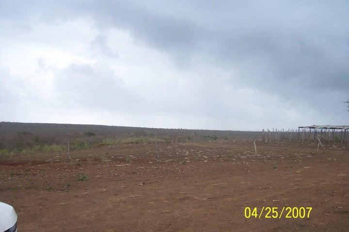 Terreno Falcon>Guamacho>El Araguan - Venta:1.862.000 Precio Referencial - codigo: 18-5068
