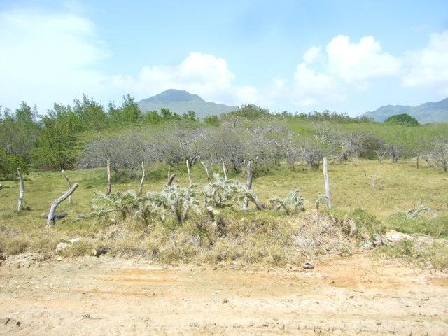 Terreno Nueva Esparta>Margarita>Pedro Gonzalez - Venta:1.074.062.000 Precio Referencial - codigo: 18-15235