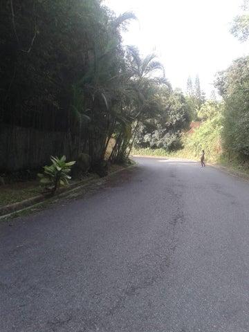 Terreno Distrito Metropolitano>Caracas>La Boyera - Venta:75.000 Precio Referencial - codigo: 18-15465