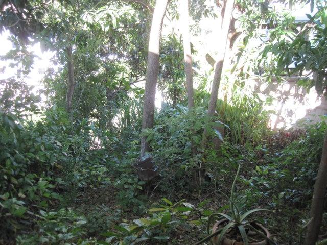 Terreno Distrito Metropolitano>Caracas>Colinas de Santa Monica - Venta:50.000 Precio Referencial - codigo: 18-16534