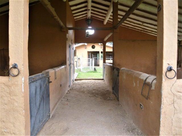 Casa Carabobo>Municipio Libertador>Safari Ranch - Venta:150.000 Precio Referencial - codigo: 19-584