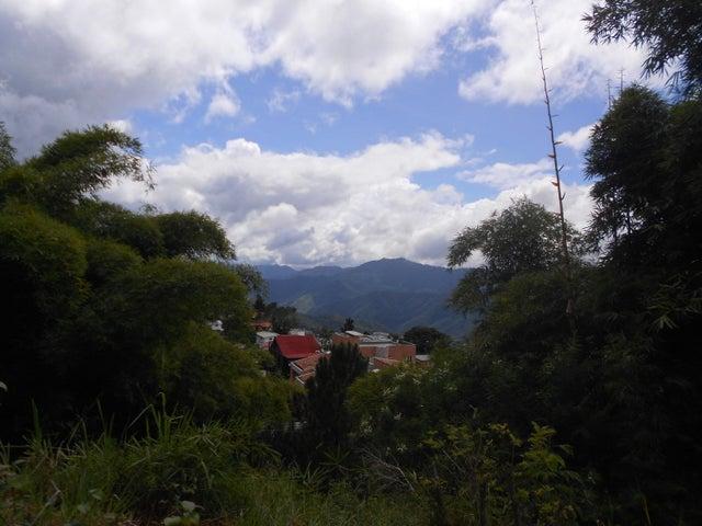 Terreno Distrito Metropolitano>Caracas>Loma Linda - Venta:250.000 Precio Referencial - codigo: 19-991