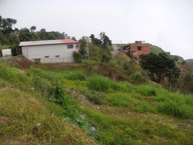 Terreno Vargas>El Junquito-Vargas>El Tibron - Venta:8.000 Precio Referencial - codigo: 19-1575