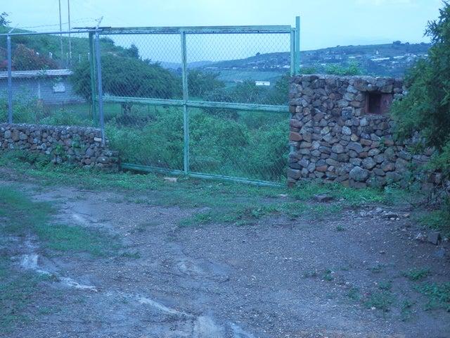 Terreno Lara>Cubiro>Jimenez - Venta:990 Precio Referencial - codigo: 19-1903