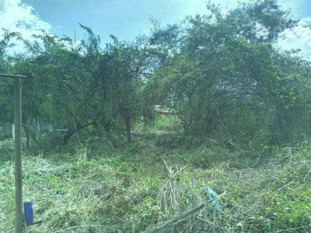 Terreno Distrito Metropolitano>Caracas>Bosques de la Lagunita - Venta:60.000 Precio Referencial - codigo: 19-2115