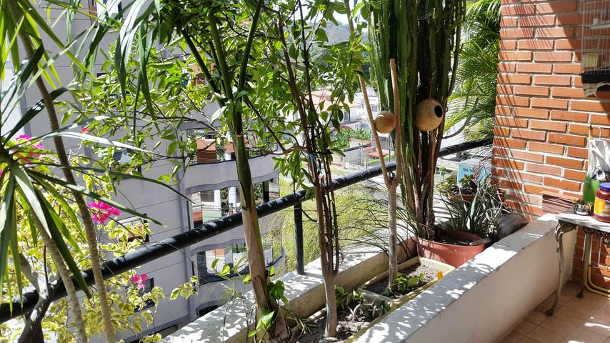 Apartamento Aragua>Maracay>La Soledad - Venta:315.000 Precio Referencial - codigo: 19-2361