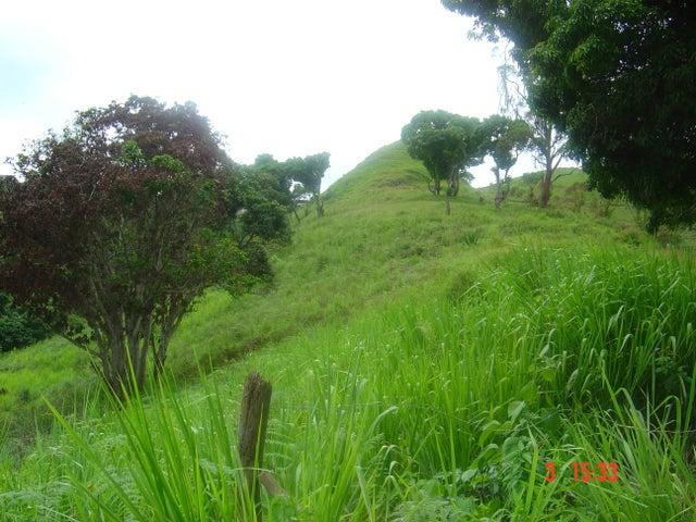 Terreno Miranda>Los Teques>Los Montes Verdes - Venta:250.000 Precio Referencial - codigo: 19-4081