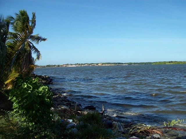 Terreno Zulia>Municipio San Francisco>El Bajo - Venta:160.000 Precio Referencial - codigo: 19-5068