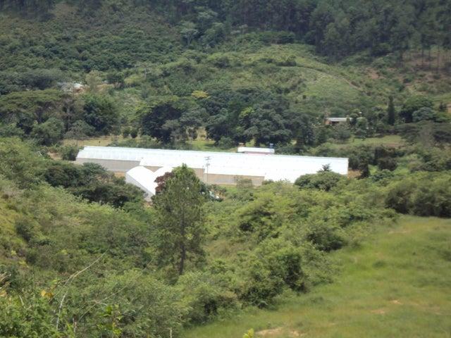 Terreno Yaracuy>Nirgua>Sector El Kiosko - Venta:200.000 Precio Referencial - codigo: 19-5153