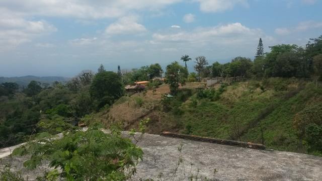Terreno Miranda>Paracotos>Parques Del Sur - Venta:12.500 Precio Referencial - codigo: 19-5308