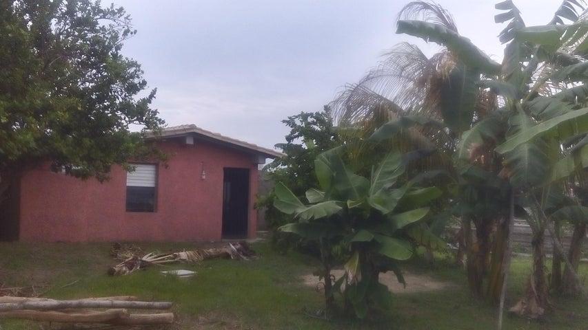 Terreno Miranda>Higuerote>Higuerote - Venta:10.000 Precio Referencial - codigo: 19-5734