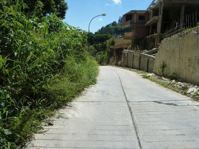 Terreno Distrito Metropolitano>Caracas>La Boyera - Venta:340.000 Precio Referencial - codigo: 19-5857