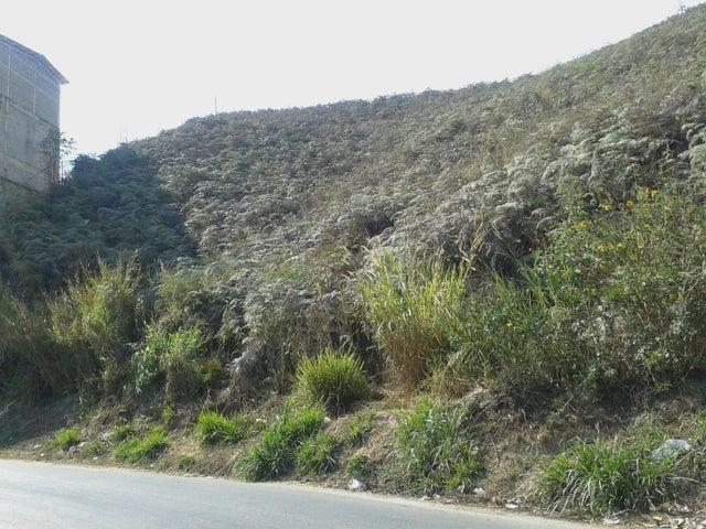 Terreno Miranda>San Antonio de los Altos>Las Minas - Venta:200.000 Precio Referencial - codigo: 19-6511