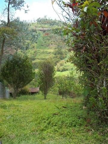 Terreno Miranda>Municipio Los Salias>Mirador Panamericano - Venta:78.000 Precio Referencial - codigo: 19-6531