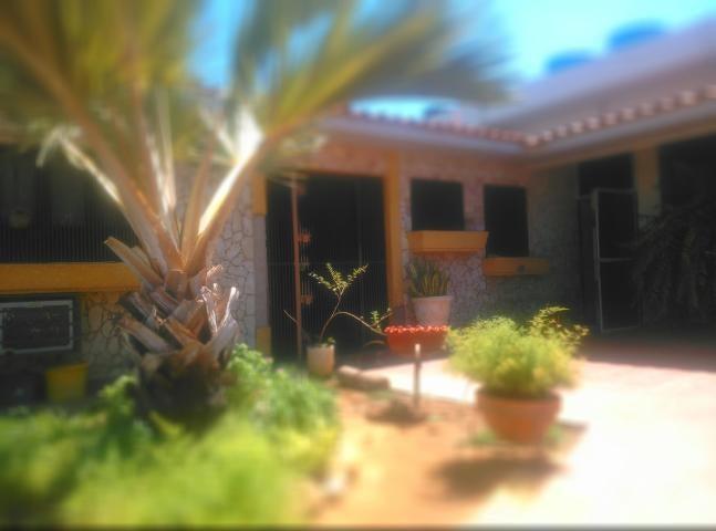 Casa Falcon>Punto Fijo>Santa Fe - Venta:100.000 Precio Referencial - codigo: 19-7226