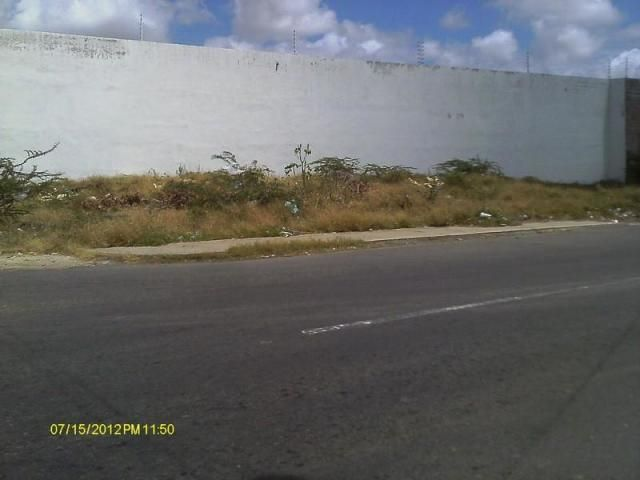 Terreno Falcon>Punto Fijo>Nuevo Pueblo - Venta:10.000 Precio Referencial - codigo: 19-8272