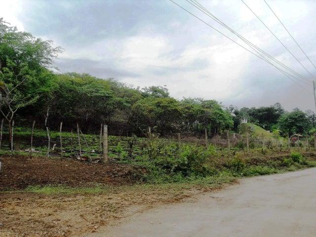 Terreno Carabobo>Municipio Libertador>Santa Isabel - Venta:3.100 Precio Referencial - codigo: 19-8406