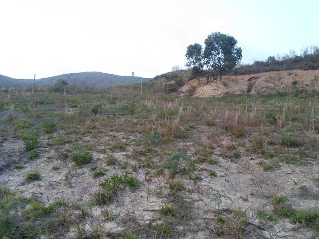 Terreno Miranda>Carrizal>Colinas de Carrizal - Venta:6.000 Precio Referencial - codigo: 19-8448