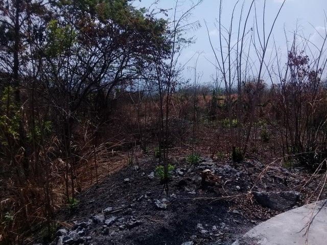 Terreno Yaracuy>Yaritagua>Municipio Peña - Venta:59.000 Precio Referencial - codigo: 19-8939