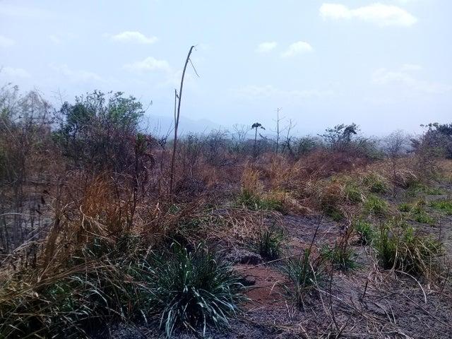 Terreno Yaracuy>Yaritagua>Municipio Peña - Venta:65.000 Precio Referencial - codigo: 19-8939